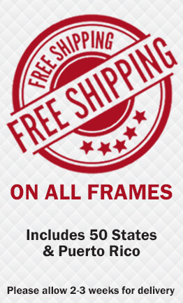 free shipping on all frames